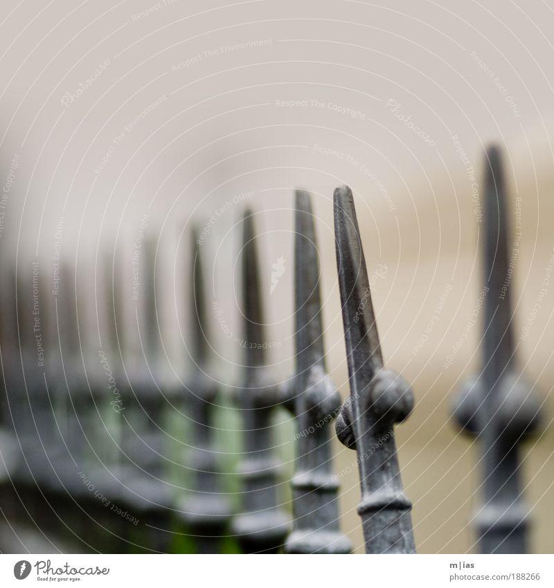 Windschief vorm Haus. Reichtum Häusliches Leben Garten Baustelle Ruine Zaun Metall Stahl Kraft Sicherheit Schutz Wachsamkeit Verbote Vergangenheit