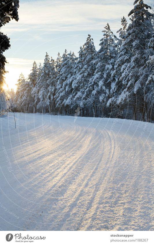 Winterstraße gepflügt Kurve nordisch Skandinavien Finnisch Finnland kalt Sonnenlicht Baum Wald Straße Schnee Arktis