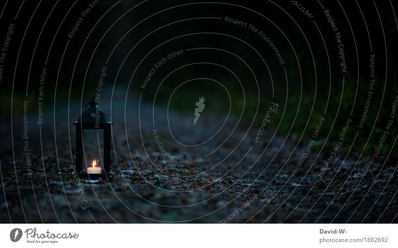 eine Kerze brennt in einer verlassenen Laterne mitten auf dem Waldweg Kerzenschein düster dunkel leuchten Licht Flamme Farbfoto Menschenleer Glaube Hoffnung