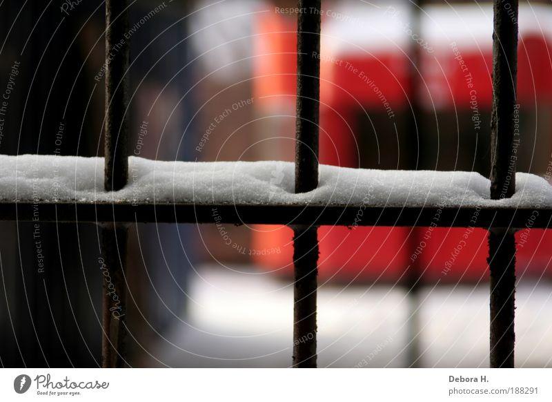 eisgitter Eis Frost Schnee Menschenleer Fabrik Gebäude Fenster Metall Stahl Rost alt bedrohlich stark blau braun rot weiß Einsamkeit Verzweiflung Gitter