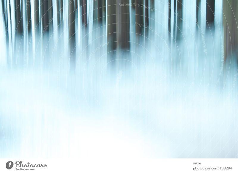 *500* Schneegrenze Umwelt Natur Landschaft Pflanze Urelemente Winter Baum Wald ästhetisch außergewöhnlich fantastisch hell kalt weiß Stimmung Traurigkeit