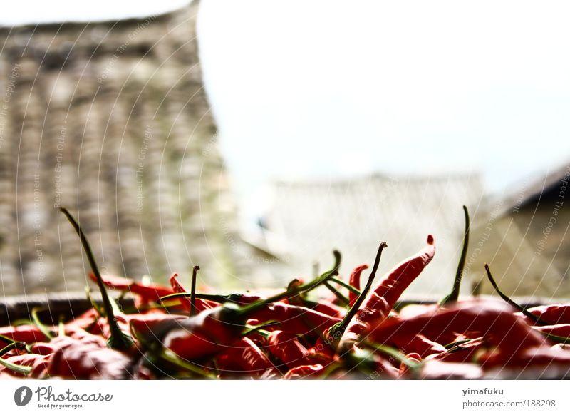 Chilies in einer kleinen Stadt Lebensmittel Kräuter & Gewürze Asiatische Küche exotisch Ausflug Dorf Kleinstadt lecker trocken rot China Basha Würzig Farbfoto