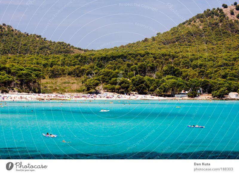 Wetter: Der Gegentrend! schön Sonne Meer Sommer Strand Wald Erholung Wellen Schwimmen & Baden Insel Mallorca Wasser Wellness Hügel Bucht türkis