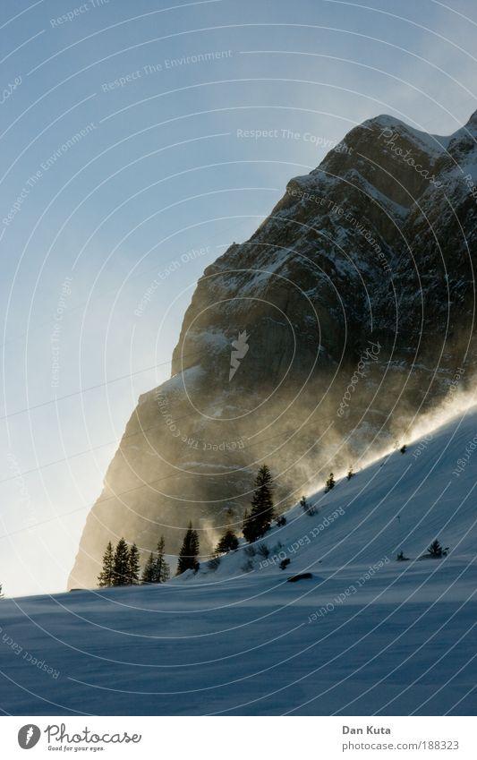Das Gold der Berge schön Himmel Freude Winter Schnee Landschaft Eis Stimmung Wind Wetter Frost Klima Schweiz Sturm Tanne genießen