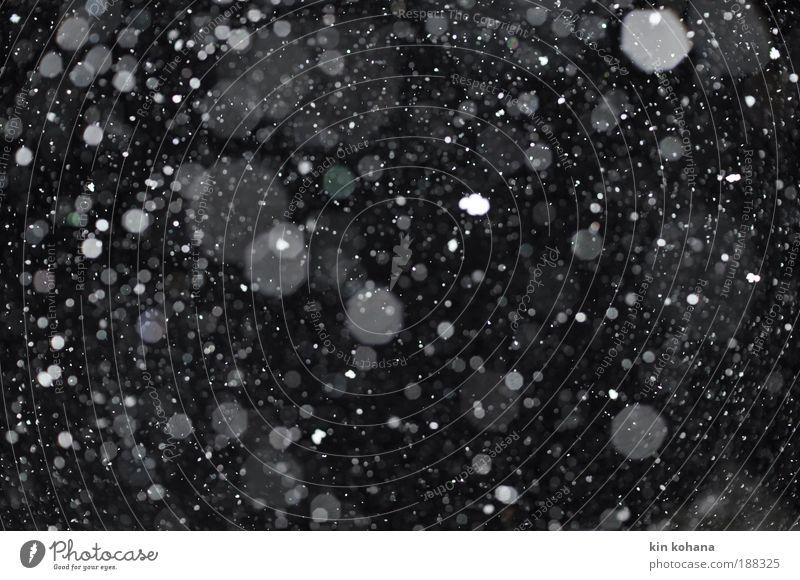 verweht (fünfzig kleine flocken) Himmel Nachthimmel Winter Eis Frost Schnee Schneefall Kristalle beobachten berühren fallen träumen kalt schwarz weiß Einsamkeit
