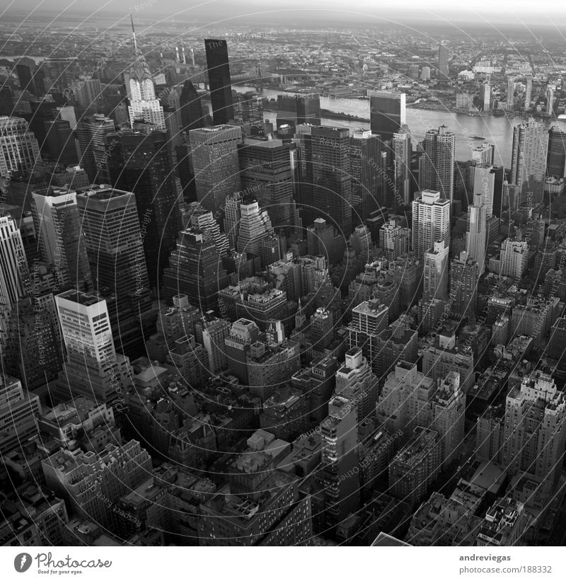 Stadt Schwarzweißfoto Vogelperspektive verrückt Häusliches Leben Skyline Wahrzeichen Stadtzentrum überbevölkert
