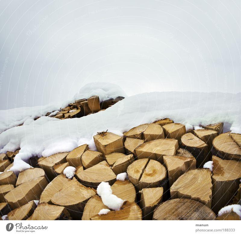 Brennholz Natur Winter kalt Umwelt Wärme natürlich Schnee Holz Eis Energie Frost Landwirtschaft Wohlgefühl Möbel nachhaltig Forstwirtschaft