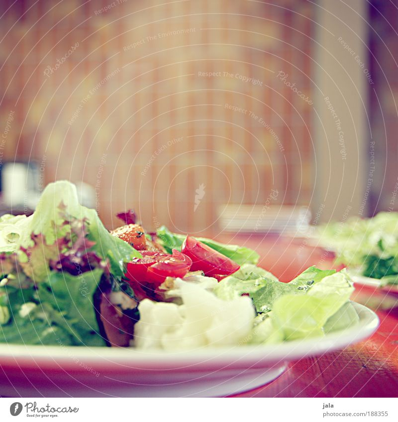 Da haben wir den Salat Ernährung Gesundheit Lebensmittel Küche Kräuter & Gewürze Geschirr Gemüse lecker Teller Abendessen Tomate Vitamin Mittagessen Bioprodukte
