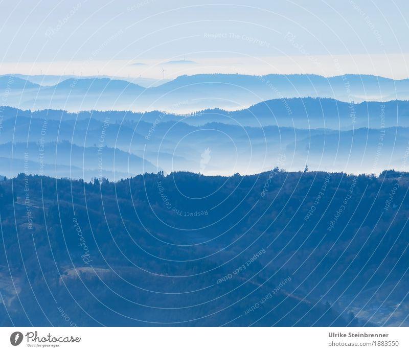 Schwarzwaldhöhen 2 Ferien & Urlaub & Reisen Tourismus Ausflug Winter Winterurlaub Berge u. Gebirge wandern Umwelt Natur Landschaft Pflanze Himmel Schönes Wetter