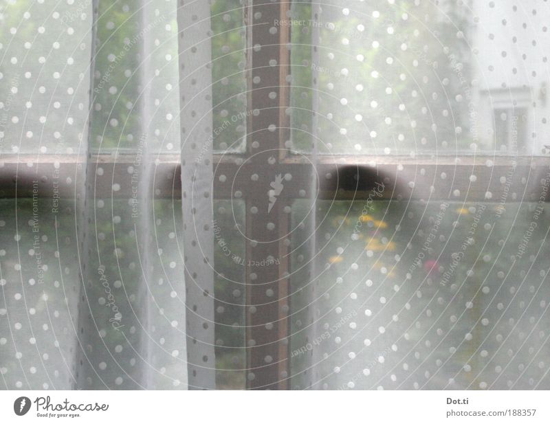 outlook Häusliches Leben Wohnung Innenarchitektur beobachten Blick träumen retro Geborgenheit Romantik Neugier Einsamkeit Fenster Fensterkreuz Gardine Stoff