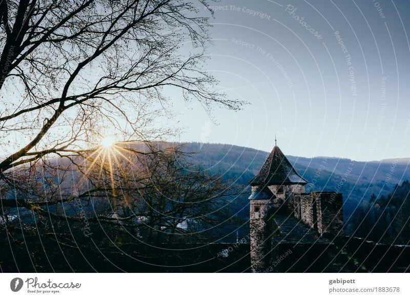 Burg Hirschhorn Erholung ruhig Tourismus Ausflug Umwelt Natur Landschaft Himmel Wolkenloser Himmel Horizont Winter Schönes Wetter Wald Hügel Hessen hirschhorn