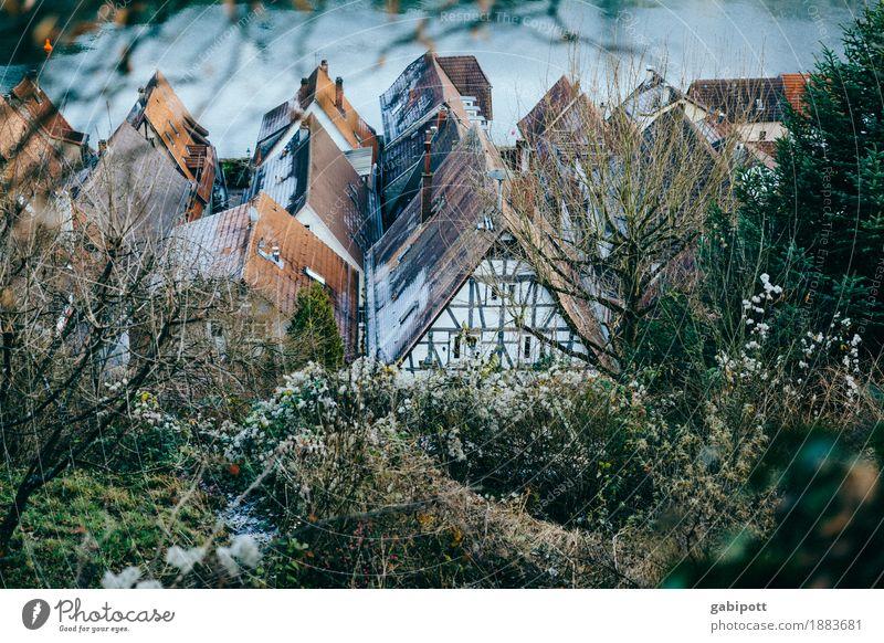 Hirschhorn am Neckar Ferien & Urlaub & Reisen Umwelt Landschaft Winter Schönes Wetter Hessen Dorf Kleinstadt Altstadt Haus Gebäude Fassade Dach unten Idylle