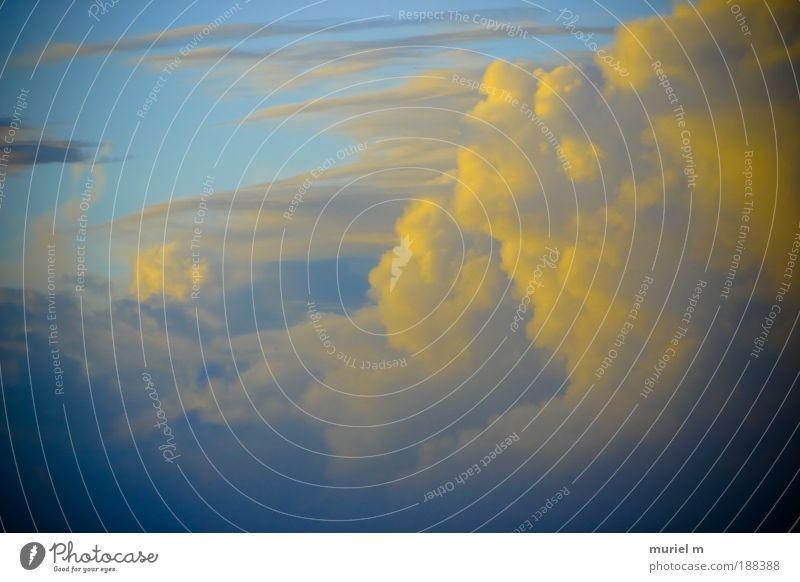 Kanarienwolken Himmel Natur blau Meer Winter Wolken Ferne Farbe gelb Umwelt Luft Wetter Klima Urelemente bedrohlich Unendlichkeit