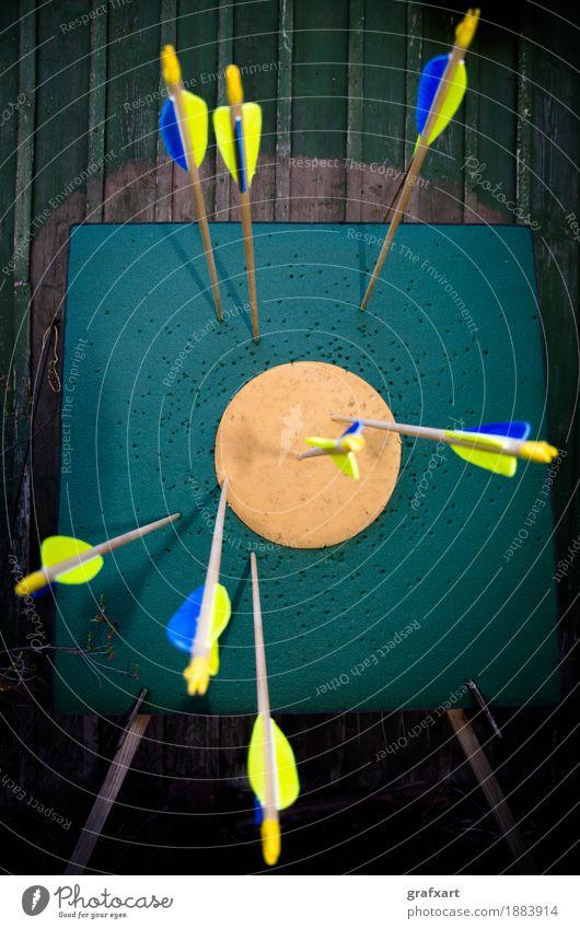 Das Ziel treffen Treffer Pfeile Bogensport Qualität Präzision Leistung Erfolg anstrengen Sportbogen ehrgeizig Einschlag Erreichen Genauigkeit talentiert