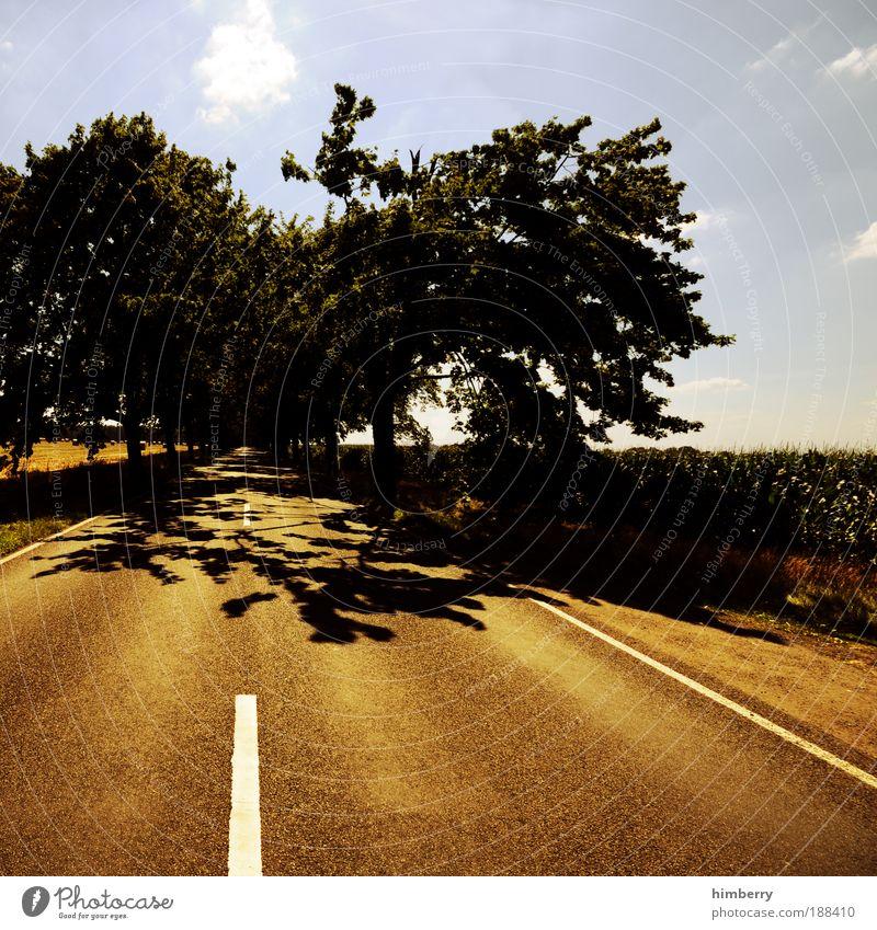 roadshow Himmel Natur Ferien & Urlaub & Reisen Sommer Umwelt Straße Landschaft Bewegung Wetter Feld Klima Ausflug Verkehr Asphalt Schönes Wetter Verkehrswege