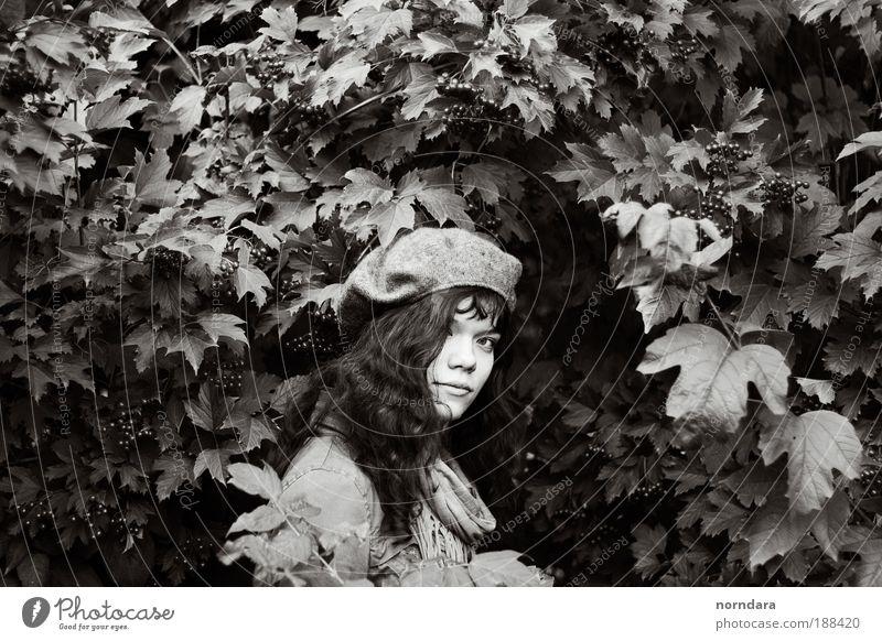Mensch Jugendliche weiß Baum Blatt Herbst Stil Stimmung braun warten Erwachsene Farbe Pflanze Beeren Junge Frau Baskenmütze