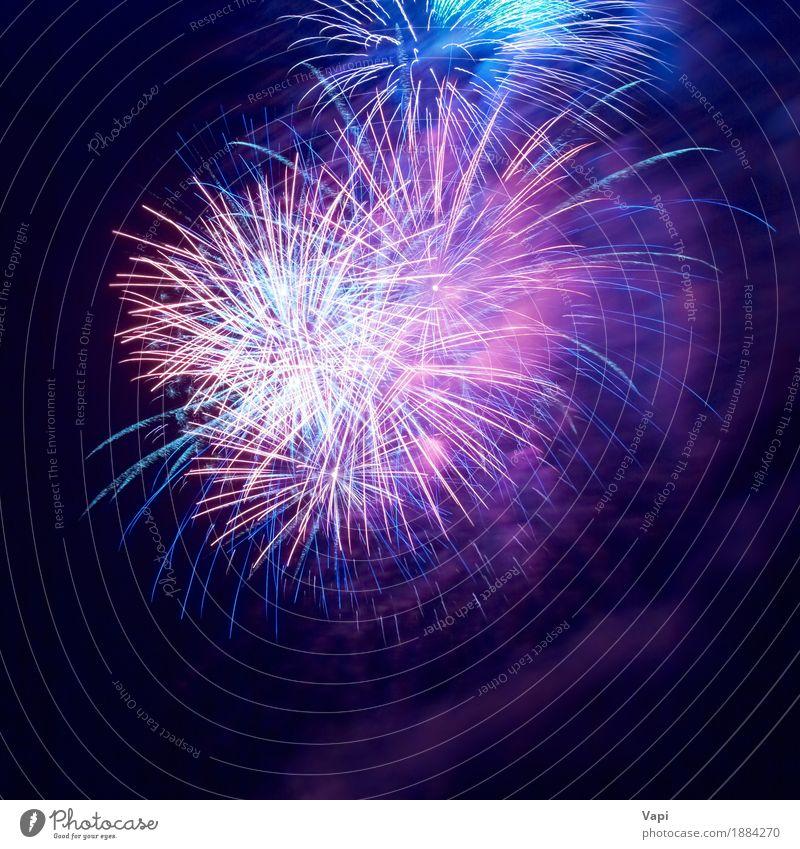 Feuerwerk am schwarzen Himmel blau Weihnachten & Advent Farbe weiß rot Freude dunkel gelb Freiheit Feste & Feiern Party rosa hell violett