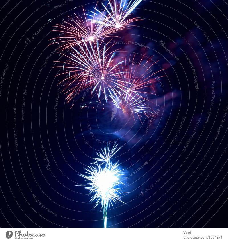Feuerwerk am schwarzen Himmel blau Weihnachten & Advent Farbe weiß rot Freude dunkel gelb Freiheit Feste & Feiern Party rosa hell neu