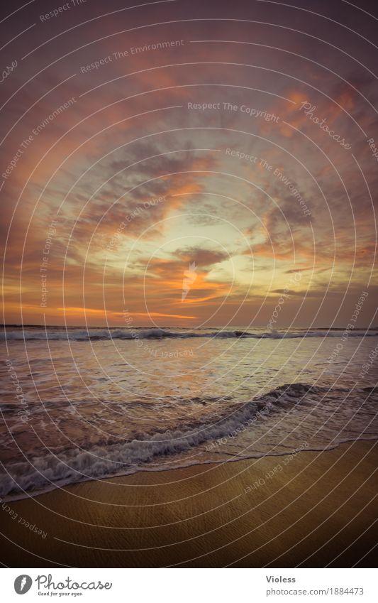 noch meer ...... Himmel Ferien & Urlaub & Reisen Sommer schön Landschaft Meer Erholung Wolken ruhig Ferne Strand Küste Tourismus orange Horizont Zufriedenheit