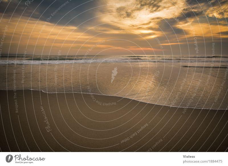 Genießen   Ruhe Abenteuer Ferne Freiheit Expedition Sommer Sonne Strand Meer Wellen Umwelt Natur Sand Wasser Himmel Wolken Sonnenlicht Küste entdecken Erholung