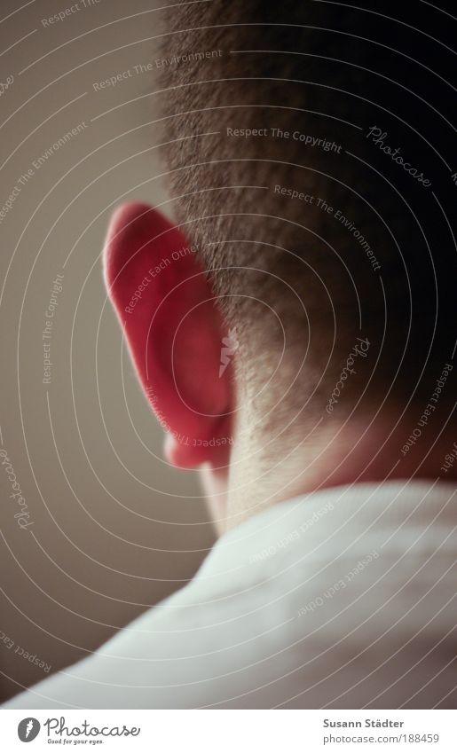 setzt die Segel! Mensch Mann Jugendliche Erwachsene Kopf Haare & Frisuren Rücken maskulin 18-30 Jahre T-Shirt Ohr Segeln Rasieren Nacken Kurzhaarschnitt