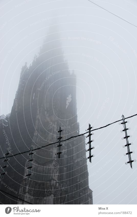 Ulmer Münster Ferien & Urlaub & Reisen Wolken Religion & Glaube Wetter Nebel Fassade Ausflug Platz groß Kirche Turm Silhouette Bauwerk Denkmal Wahrzeichen Dom