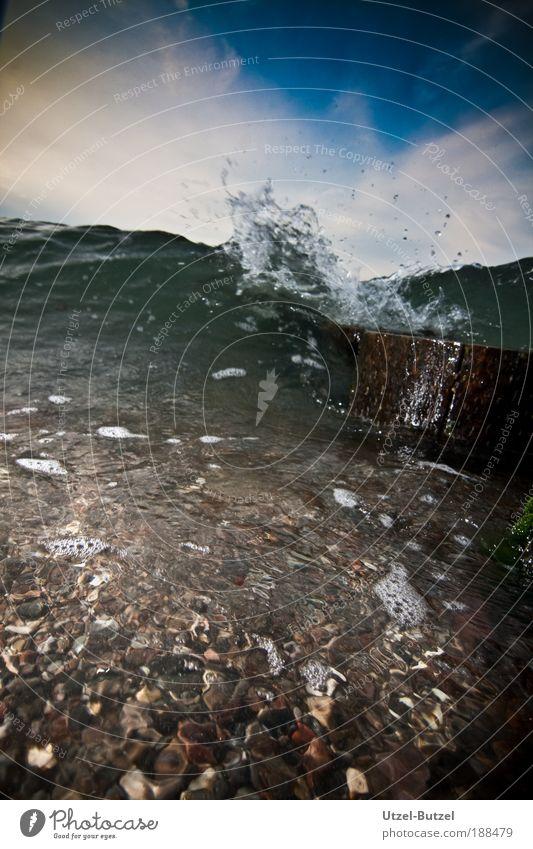 Die Welle Wasser Meer Ferien & Urlaub & Reisen Kraft Küste Wellen Umwelt Tourismus Freizeit & Hobby Ostsee Schönes Wetter