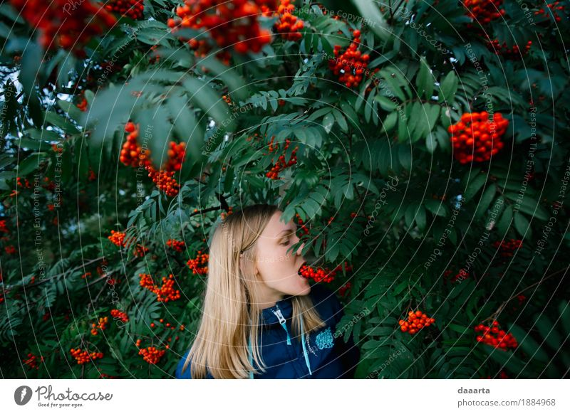 leckere Rowan Natur Ferien & Urlaub & Reisen Baum Freude Essen Leben Lifestyle feminin Stil Spielen Garten Freiheit Feste & Feiern Tourismus wild