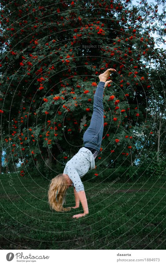 auf Händen Natur Baum Freude Leben Lifestyle feminin Stil Spielen Garten Freiheit Feste & Feiern wild Freizeit & Hobby Park Ausflug Fröhlichkeit