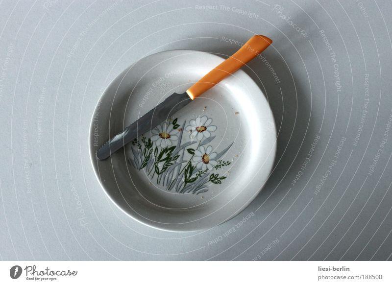 Mahlzeit Geschirr Teller Besteck Messer Tisch Pflanze Blume Blüte Gänseblümchen Textfreiraum links Textfreiraum rechts Hintergrund neutral Freisteller