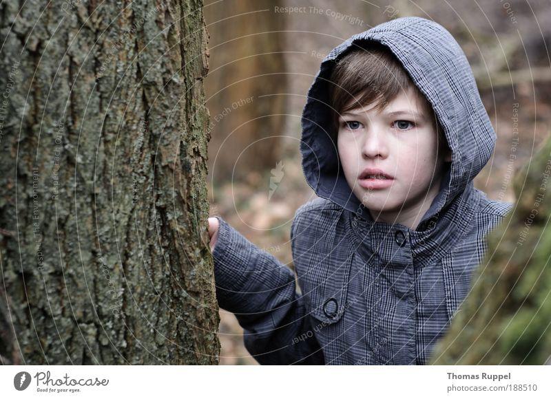 Blick nach vorne Mensch Kind Natur Jugendliche Baum Pflanze Einsamkeit Wald Junge Kindheit maskulin Abenteuer gefährlich bedrohlich beobachten
