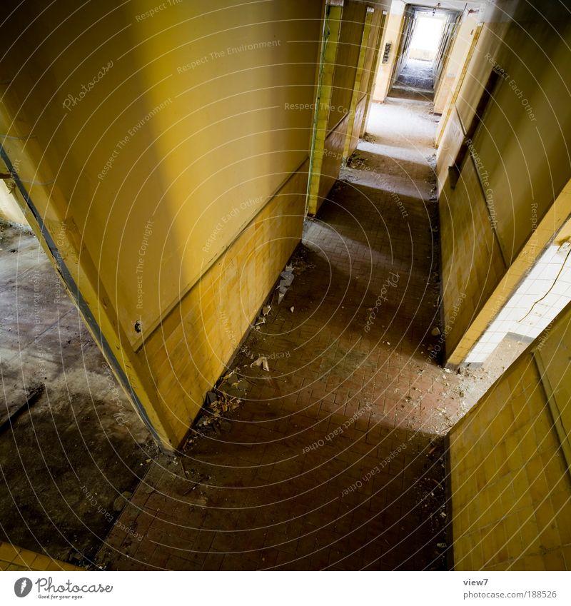 microchiroptera alt Einsamkeit gelb dunkel Stein Linie Raum Angst dreckig Wohnung elegant fliegen Beton bedrohlich einfach Wandel & Veränderung