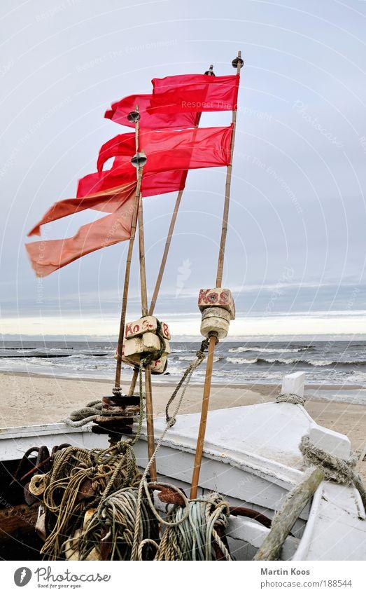 gegen wind Wasser rot Meer Strand Umwelt Freiheit Erde Horizont Wellen Wind Kraft Freizeit & Hobby Energie Seil Zukunft Wasserfahrzeug
