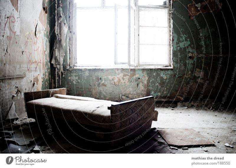 EIN LAUSCHIGES PLÄTZCHEN ZUM VÖGELN alt dunkel Fenster kalt Innenarchitektur außergewöhnlich hell Raum Dekoration & Verzierung trist ästhetisch weich Bett Möbel