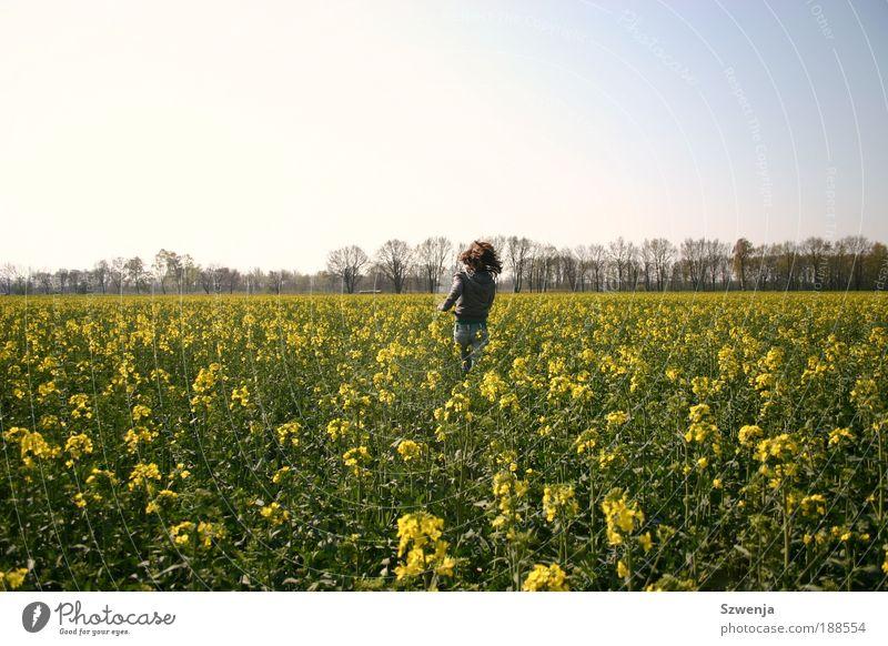 Lauf! Frau Kind Himmel Natur Jugendliche Pflanze Sonne Sommer Freude Erwachsene Umwelt Landschaft Wiese Bewegung Freiheit Haare & Frisuren