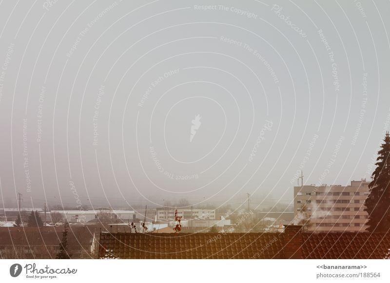 Grau wie da wo ich wohne Stadt Winter Haus kalt grau Eis Nebel Schweiz geschlossen Frost trist Aussicht Dach Klima Rauch Tanne