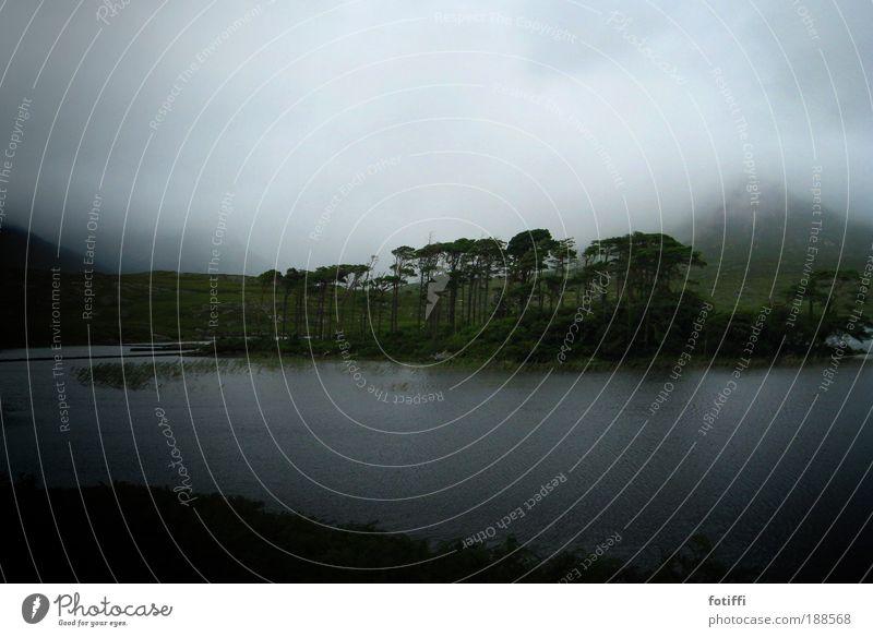 KoboldLand Natur Landschaft Pflanze Urelemente Wasser Himmel Wolken Nebel Insel Moor Sumpf See dunkel Ferne natürlich schön blau grün ruhig Gelassenheit Zeit