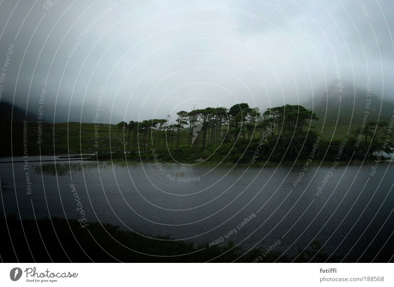 KoboldLand Natur Wasser schön Himmel grün blau Pflanze ruhig Wolken Ferne dunkel Berge u. Gebirge Traurigkeit See Regen Landschaft