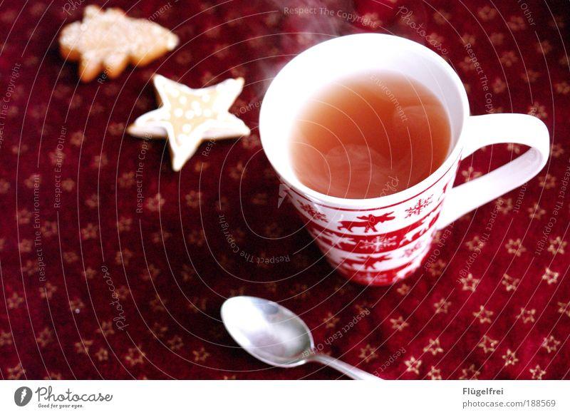 Das richtige bei dem Wetter rot Winter Erholung Stern Getränk genießen trinken Tee Tanne Tasse gemütlich aufsteigen Tischwäsche Besteck Plätzchen Löffel