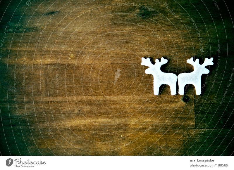 weihnachts filz getier Weihnachten & Advent weiß ruhig Innenarchitektur Stil Kunst Feste & Feiern braun Design Raum leuchten Dekoration & Verzierung elegant