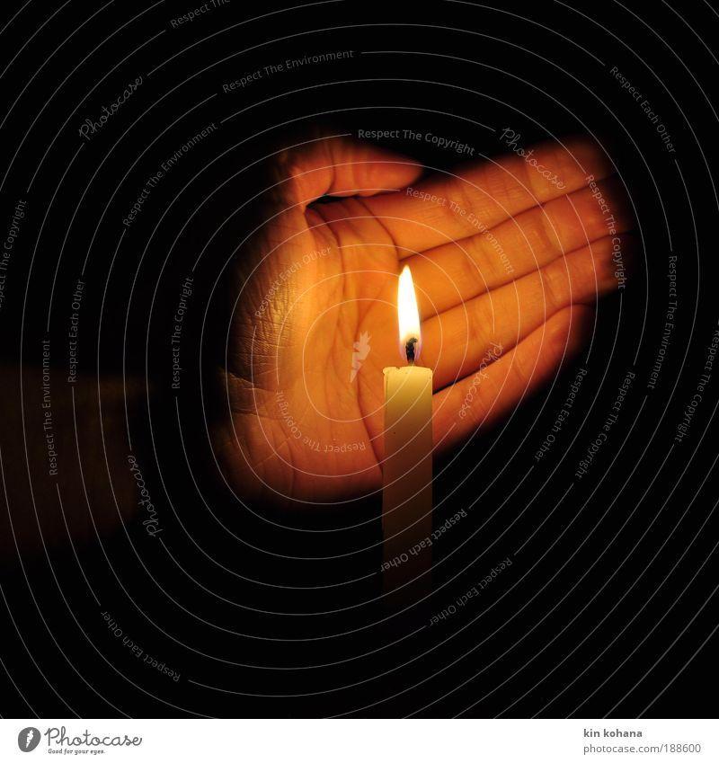 ... beschützt Hand weiß ruhig dunkel kalt Wärme Kraft Urelemente gold Hoffnung Sicherheit Kerze Romantik Schutz Vertrauen Warmherzigkeit
