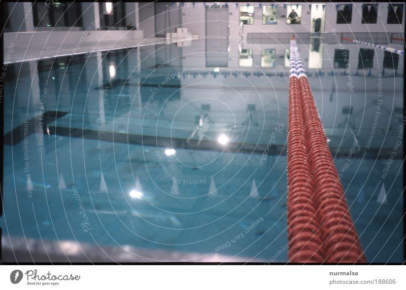 Seepferdchen Vers. C Wasser Freude ruhig Umwelt Sport Bewegung springen Innenarchitektur Freizeit & Hobby Schwimmen & Baden elegant Wassertropfen Erfolg