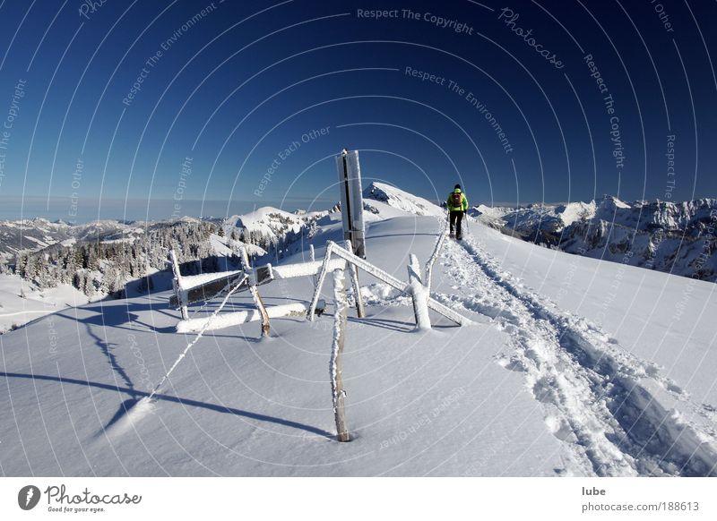 Schneeschuhwanderung Natur Ferien & Urlaub & Reisen Winter Ferne kalt Umwelt Landschaft Berge u. Gebirge Freiheit Wege & Pfade Eis laufen wandern Abenteuer
