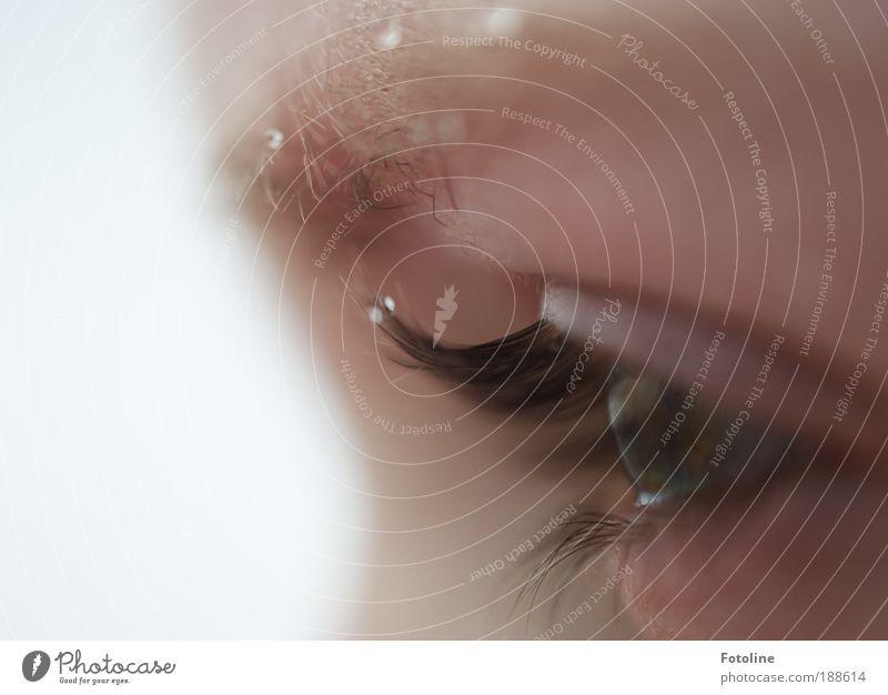 150 - Die Zukunft im Blick - Mensch Wasser Winter Gesicht Auge kalt Schnee feminin Haare & Frisuren Kopf Schneefall Eis hell Wetter Umwelt