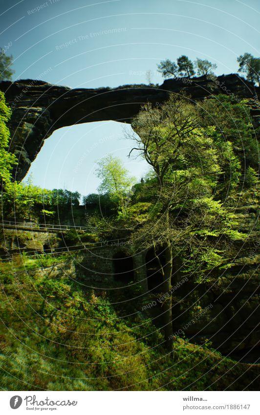 im tor wart Natur Pflanze Sommer Baum Berge u. Gebirge Frühling Wege & Pfade natürlich Felsen Tourismus Ausflug wandern Fußweg Elbsandsteingebirge Naturwunder