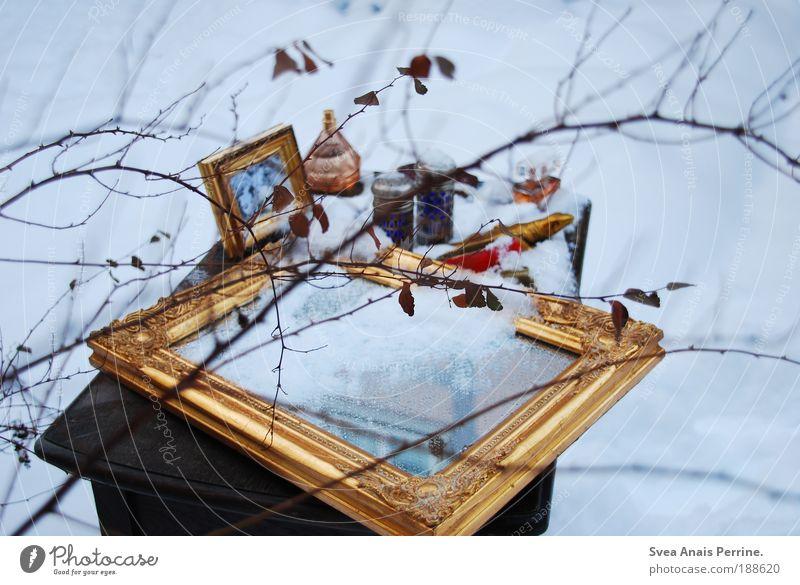 du bist eis...eiskalt. Baum Winter Blatt Einsamkeit Schnee Stil Garten Holz Eis Stimmung braun Gold elegant Umwelt gold