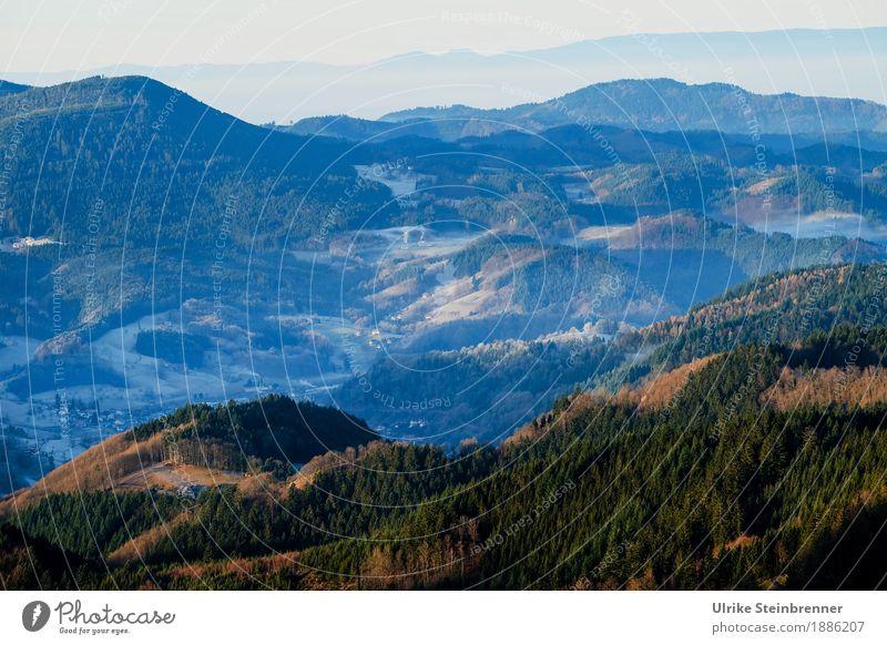 Höhenlage 1 Ferien & Urlaub & Reisen Tourismus Ausflug Winter Berge u. Gebirge wandern Umwelt Natur Landschaft Pflanze Schönes Wetter Eis Frost Baum Wald