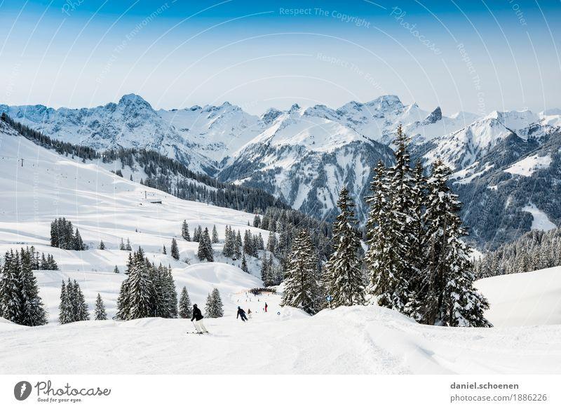 Abfahrt Ferien & Urlaub & Reisen Landschaft Freude Winter Berge u. Gebirge Schnee Sport Tourismus Zufriedenheit Freizeit & Hobby Lebensfreude Schönes Wetter