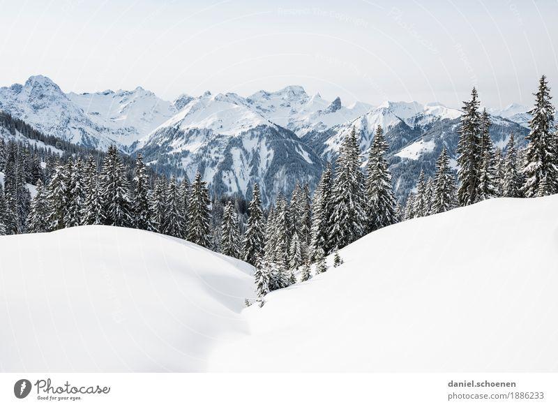 Bregenzerwald 1 Ferien & Urlaub & Reisen Winter Schnee Winterurlaub Berge u. Gebirge wandern Umwelt Natur Landschaft Alpen Schneebedeckte Gipfel hell weiß
