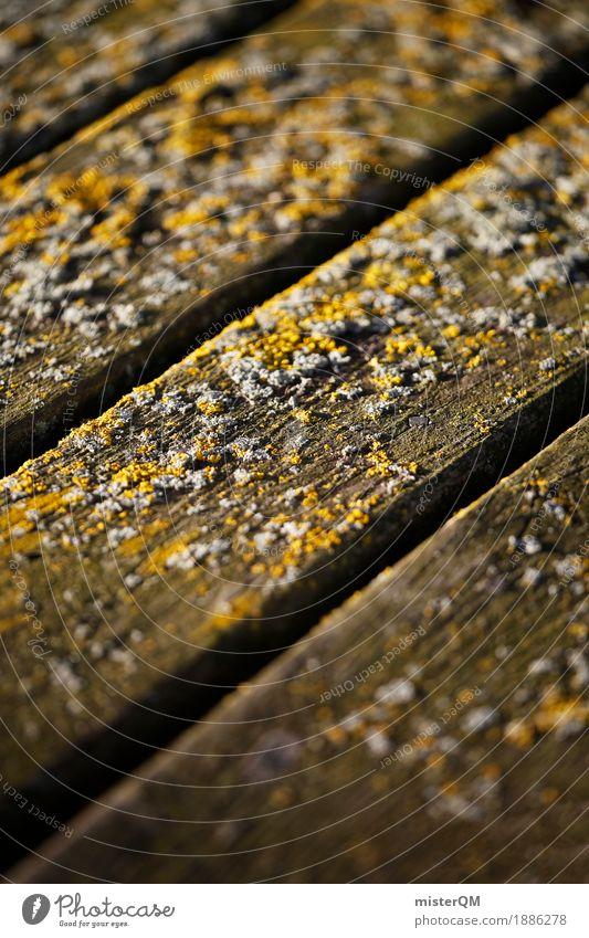 Meerboden. Kunst ästhetisch Boden Ostsee Holzbrett Holzfußboden dezent Schimmel verrotten Meerwasser